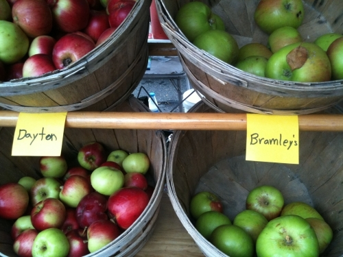 Bramley Apples and Dayton Apples at Farmers Market