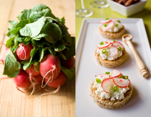 Mini Radish Ricotta and Green Onion Tartine